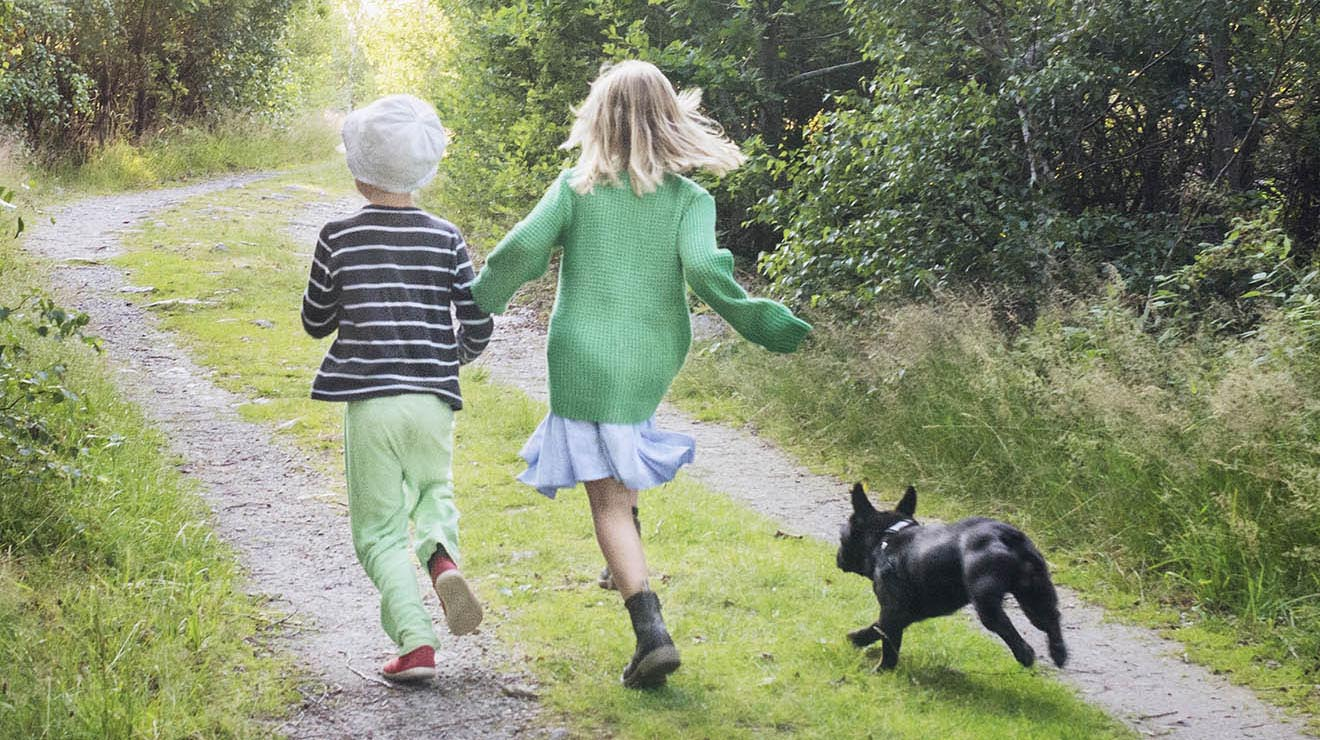 children running with dog, representing why fertility care is important